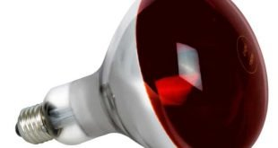 Разновидности и сфера применения инфракрасных ламп