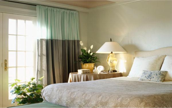 живые растения и цветы для спален