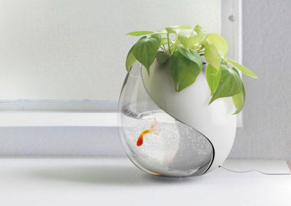 горшок с аквариумом