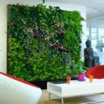 фото стены из искусственной зелени