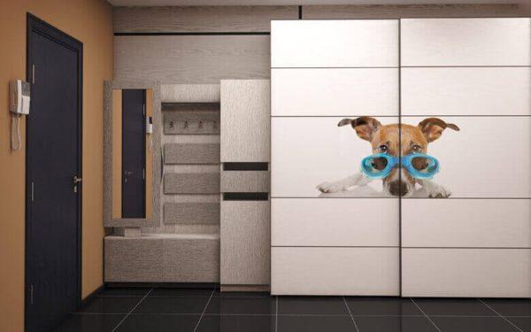 шкаф с фото обоями собаки