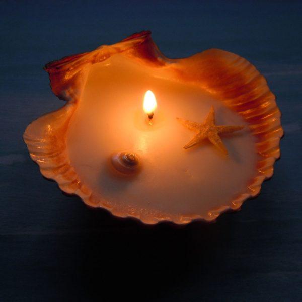 свеча в большой раковине