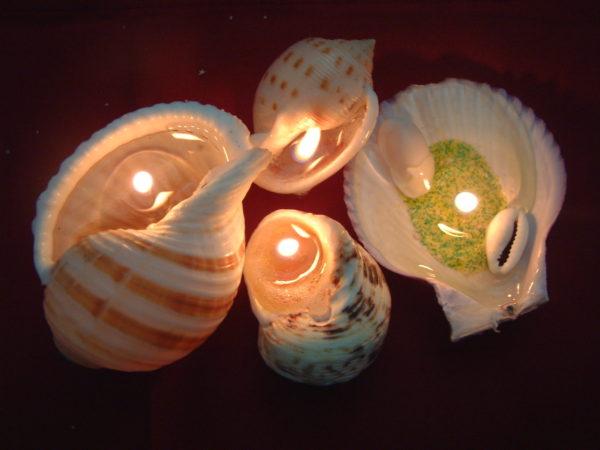 свечи в раковинах
