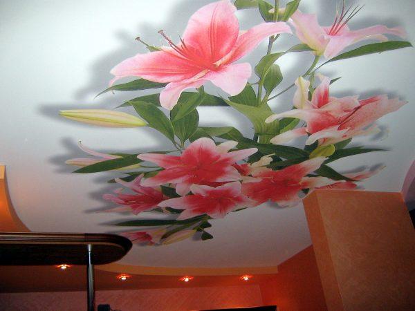 потолок натяжной с фотопечатью